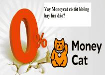vay moneycat