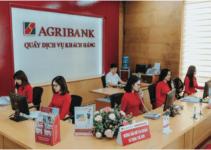 Vay tín chấp AGRIBANK: Lãi Suất? Điều Kiện và Thủ Tục?