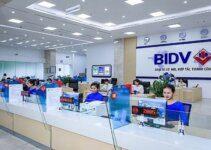 Vay Thấu Chi BIDV: Điều kiện, Thủ tục và Lãi suất